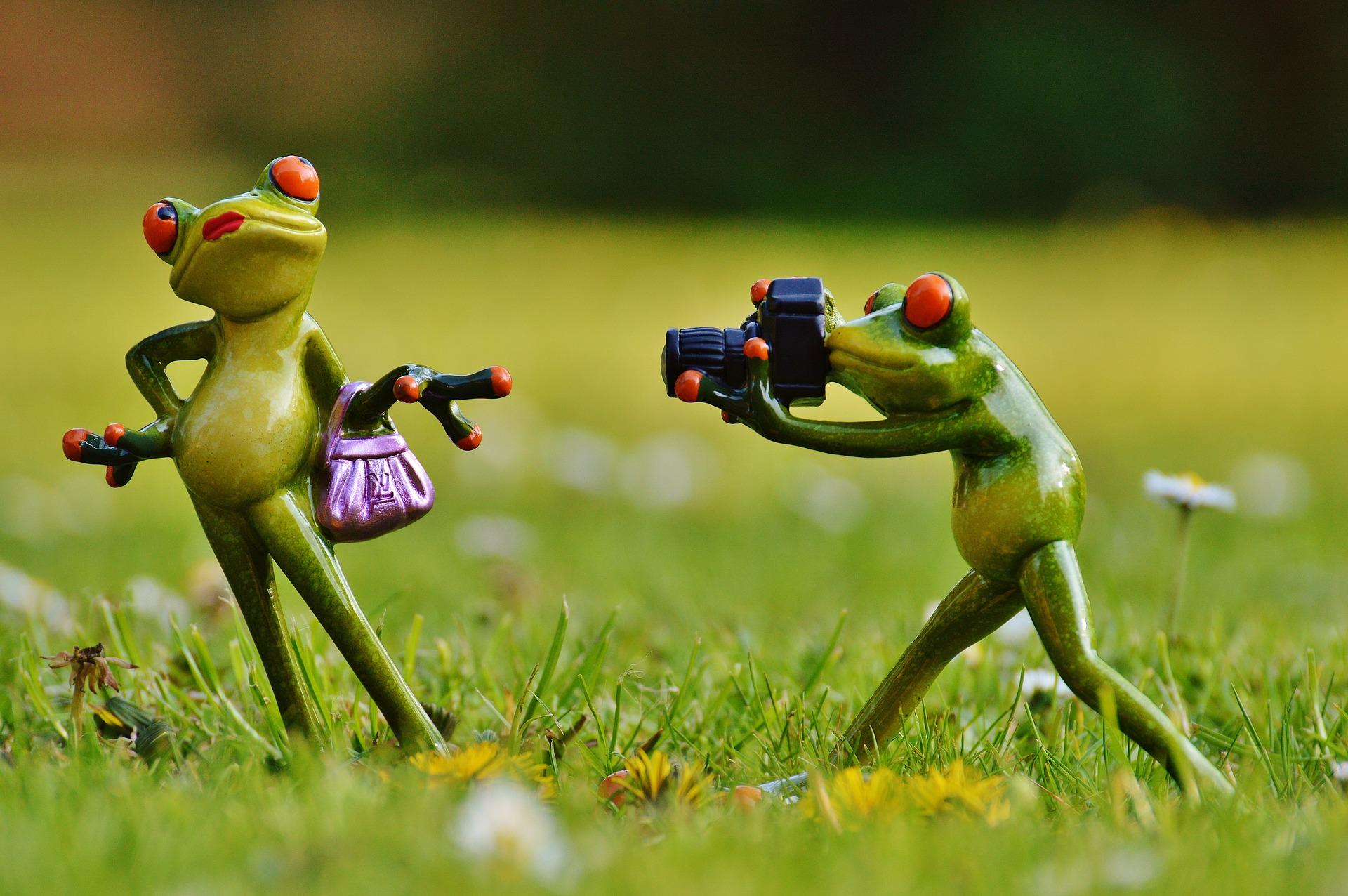 un photographe professionnel pour vous accompagner dans